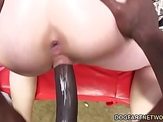 Anal Slut Crystal Jayden Takes Huge BBC in there asshole